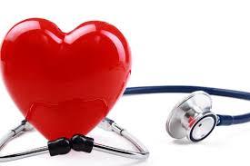 قلب و عروق چیست بیماری های قلبی و عروقی pdf مقاله قلب و عروق و پیشگیری از بیماری های مربوط به آن شایع ترین بیماری های قلبی درمان بیماری قلبی علائم ظاهری بیماری قلبی علائم بیماری قلبی در زنان خطرناک ترین بیماری قلبی